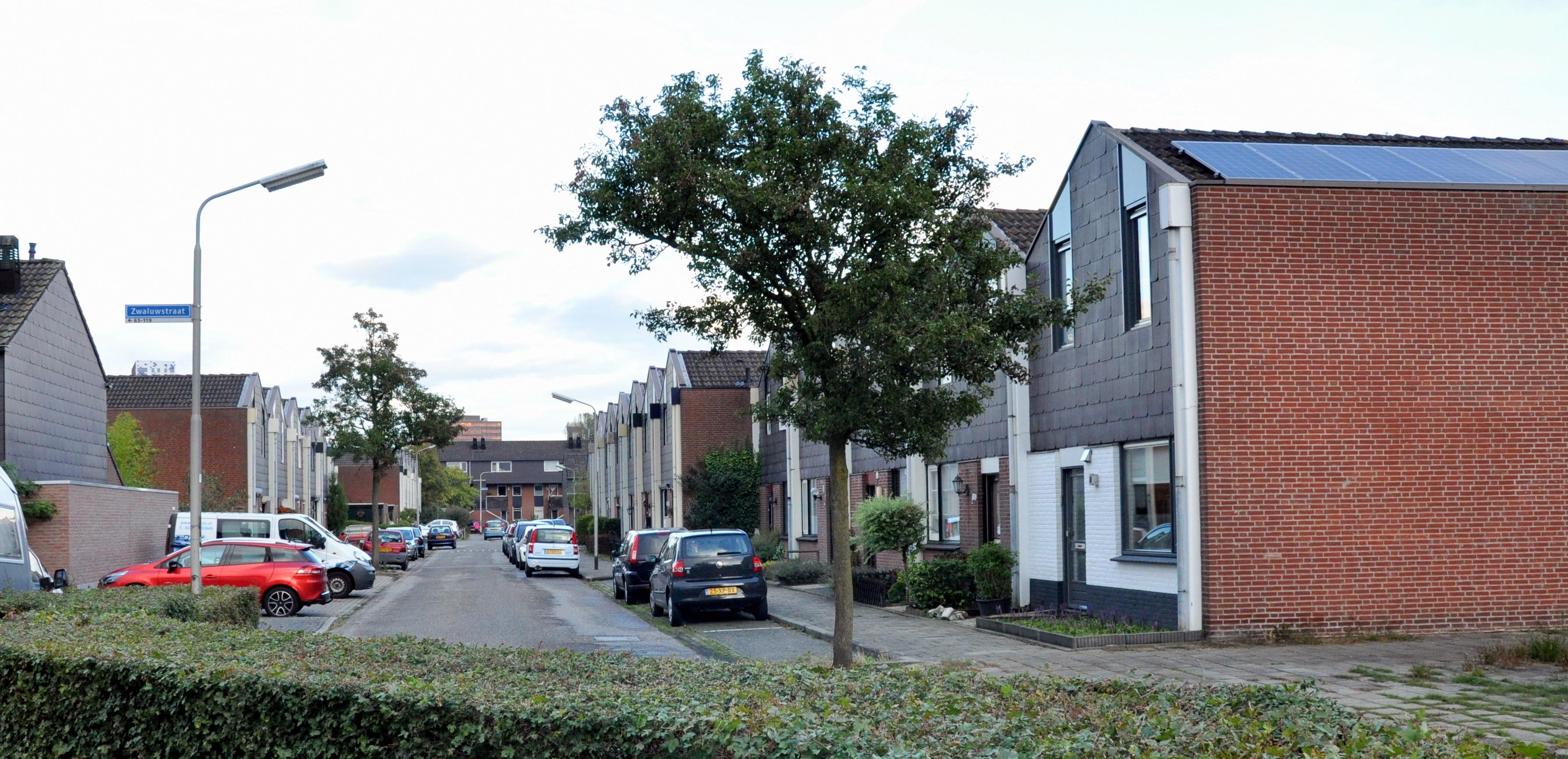 Zwaluwstraat