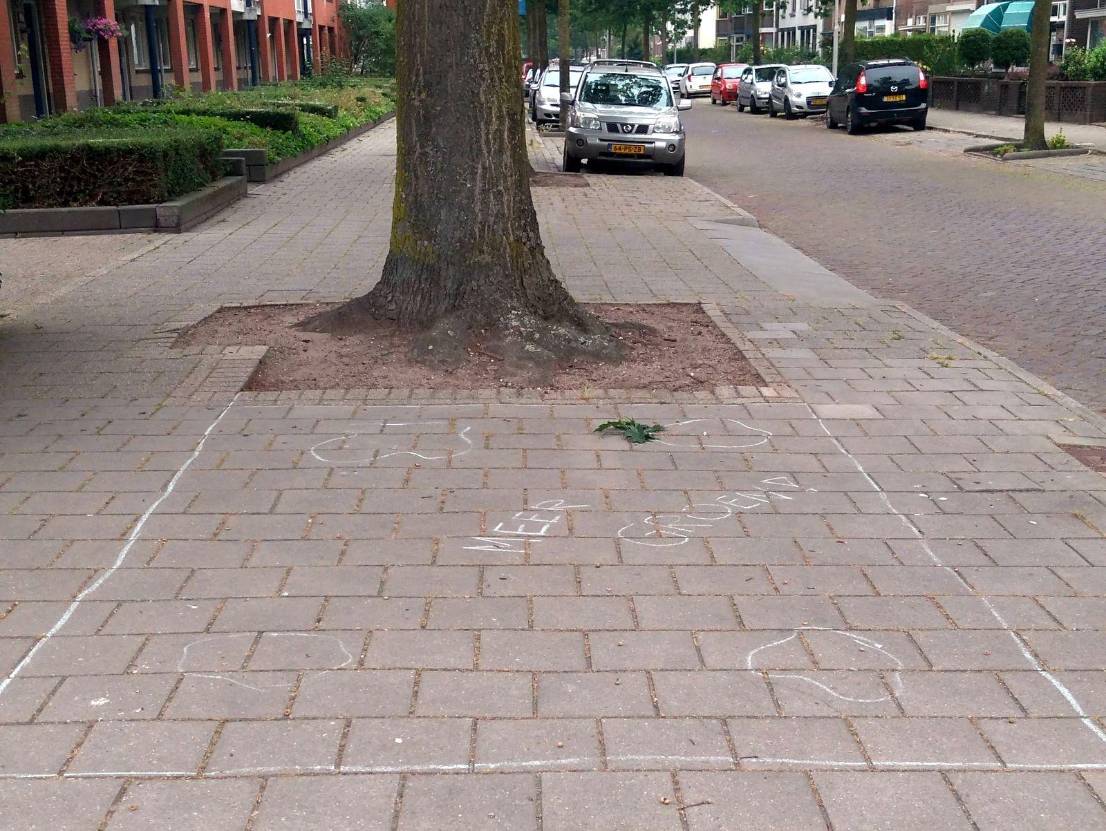 Vergroenen Biezenstraat/Maasstraat