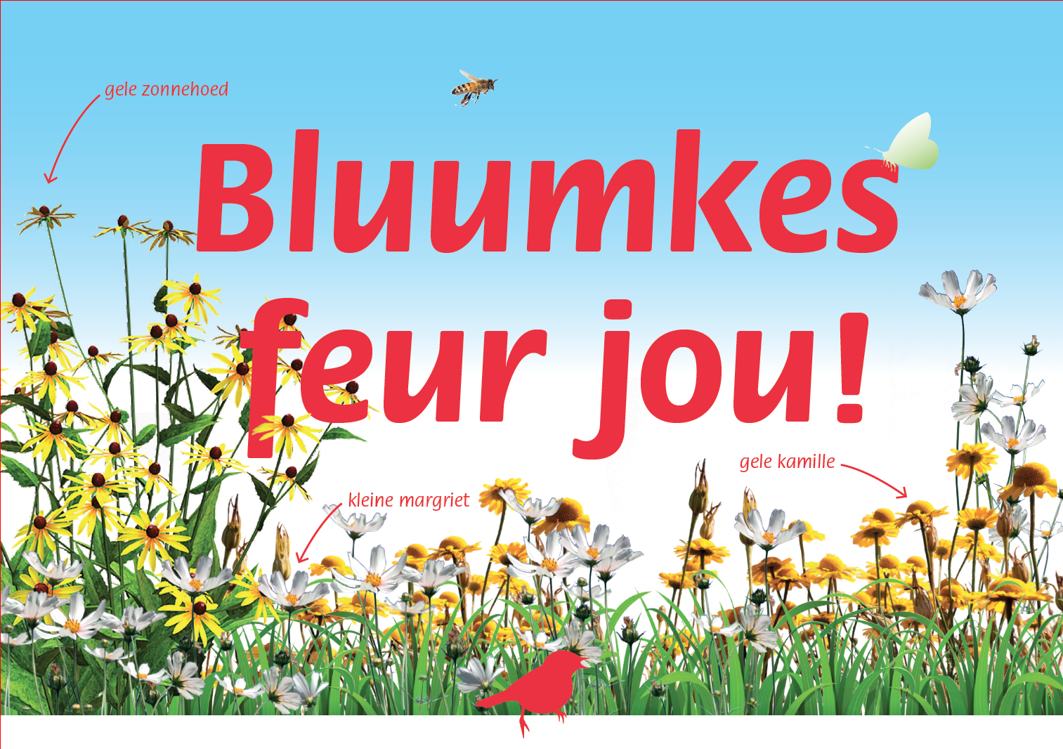 Bluumkes feur jou! – Welzijn en Steenbreek op pad met plantjes en praatjes