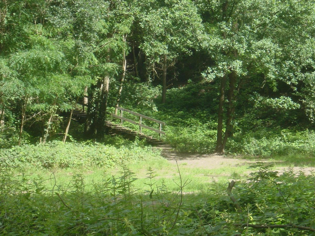 Ervaar groen in Oud West!